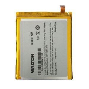 Walton GM Battery